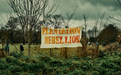 Plantation Rebellion